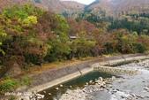 合掌村與金澤城:DSC_2676白川鄉合掌村p.jpg