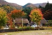 合掌村與金澤城:DSC_2705白川鄉合掌村p.jpg