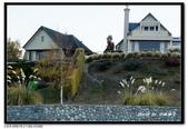 紐西蘭˙人間仙境蒂卡波湖(Lake Tekapo) :DSC01490.jpg