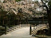 日本金澤兼六園:202金澤兼六園~.jpg