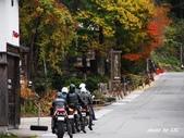 合掌村與金澤城:DSC_2950白川鄉合掌村p.jpg