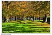 2018 基督城海格利公園:DSC_0698