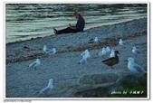 2018 紐西蘭瓦納卡湖(Lake Wanaka)的晨昏:DSC_0933.jpg