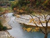 合掌村與金澤城:DSC_2910白川鄉合掌村p.jpg