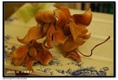 美麗人生:飄逸的猢猻木花托