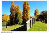 2018紐西蘭旅途秋色:1070422DSC_9477Alexandra+.jpg