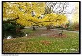 基督城海格利公園:DSC07790~.jpg