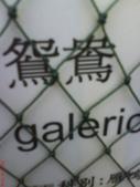 獨角仙農場:1755864500.jpg