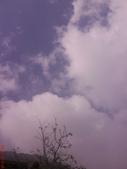 阿里山---奮起湖:1847679551.jpg