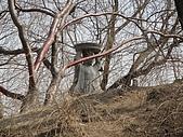 北京啪啪造.圓明園:10.仙人呈露台.JPG