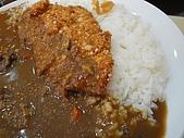 台中.利加咖哩飯(一中店):9.雞排.JPG