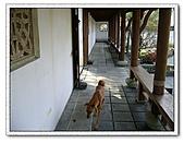 鄰近景點:仁山植物園4
