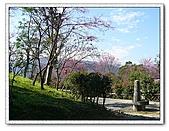 鄰近景點:仁山植物園5