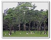 鄰近景點:羅東運動公園2