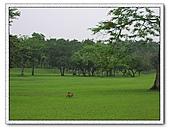 鄰近景點:羅東運動公園3