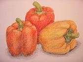 我的色鉛筆畫~初級班:甜椒