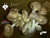 我們在家種香菇~秀珍菇的成長過程:04.jpg