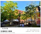 阿勃勒,台南賞花地點公開,初夏最金黃耀眼的綻放:nEO_IMG_20130602 1414.jpg