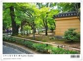京都 x 大阪 親子遊。金閣寺 世界遺產:nEO_IMG_20120623td 514.jpg