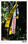 桃源谷大草原,享受大草原和山脊稜線風光:nEO_IMG_20121110 001.jpg