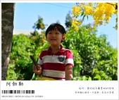 阿勃勒,台南賞花地點公開,初夏最金黃耀眼的綻放:nEO_IMG_20130602 214.jpg