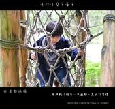 2013東勢林場賞螢趣,油桐花與螢火蟲共舞:nEO_IMG_20130413 136.jpg