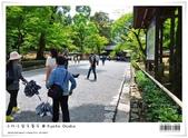 京都 x 大阪 親子遊。金閣寺 世界遺產:nEO_IMG_20120623td 515.jpg
