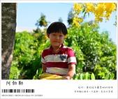 阿勃勒,台南賞花地點公開,初夏最金黃耀眼的綻放:nEO_IMG_20130602 216.jpg