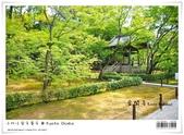 京都 x 大阪 親子遊。金閣寺 世界遺產:nEO_IMG_20120623td 535.jpg