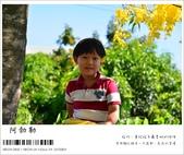 阿勃勒,台南賞花地點公開,初夏最金黃耀眼的綻放:nEO_IMG_20130602 217.jpg