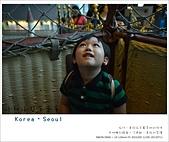 韓國首爾親子自由行。夢幻的城堡樂園~樂天世界  Lotte world 全攻略:nEO_IMG_20130711 263.jpg