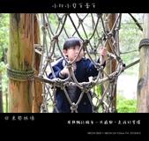 2013東勢林場賞螢趣,油桐花與螢火蟲共舞:nEO_IMG_20130413 138.jpg