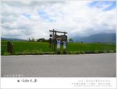 台東。伯朗大道,一望無際的遼闊田野:nEO_IMG_2014-05-31 215.jpg