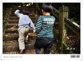 桃源谷大草原,享受大草原和山脊稜線風光:nEO_IMG_20121110 004.jpg