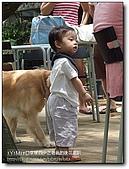 老爸的後花園:nEO_IMG_DSCF2454.jpg