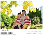 阿勃勒,台南賞花地點公開,初夏最金黃耀眼的綻放:nEO_IMG_20130602 275.jpg