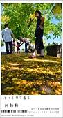 阿勃勒,台南賞花地點公開,初夏最金黃耀眼的綻放:nEO_IMG_20130602 196.jpg
