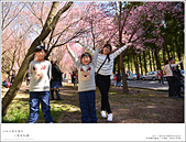 2016武陵賞櫻:nEO_IMG_017.jpg