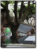 老爸的後花園:nEO_IMG_DSCF2474.jpg