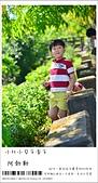 阿勃勒,台南賞花地點公開,初夏最金黃耀眼的綻放:nEO_IMG_20130602 382.jpg