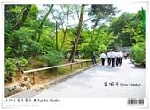 京都 x 大阪 親子遊。金閣寺 世界遺產:nEO_IMG_20120623td 504.jpg