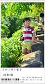 阿勃勒,台南賞花地點公開,初夏最金黃耀眼的綻放:nEO_IMG_20130602 383.jpg