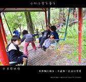 2013東勢林場賞螢趣,油桐花與螢火蟲共舞:nEO_IMG_20130413 119.jpg
