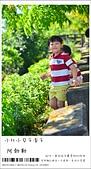 阿勃勒,台南賞花地點公開,初夏最金黃耀眼的綻放:nEO_IMG_20130602 385.jpg