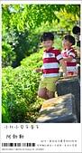 阿勃勒,台南賞花地點公開,初夏最金黃耀眼的綻放:nEO_IMG_20130602 387.jpg