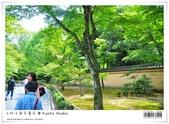 京都 x 大阪 親子遊。金閣寺 世界遺產:nEO_IMG_20120623td 509.jpg