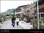賞梅。臺中新社 梅林親水岸:nEO_IMG_20120115 023.jpg