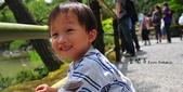京都 x 大阪 親子遊。給三歲的你和五歲的你一個環遊世界的開端:金閣寺檔頭2.jpg