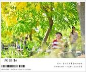 阿勃勒,台南賞花地點公開,初夏最金黃耀眼的綻放:nEO_IMG_20130602 342.jpg