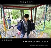 2013東勢林場賞螢趣,油桐花與螢火蟲共舞:nEO_IMG_20130413 129.jpg